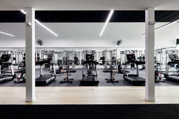 The Renovator Gym