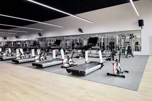Renovator Gym Port Melbourne